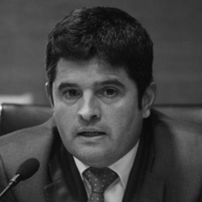Dr. José Luis Pons